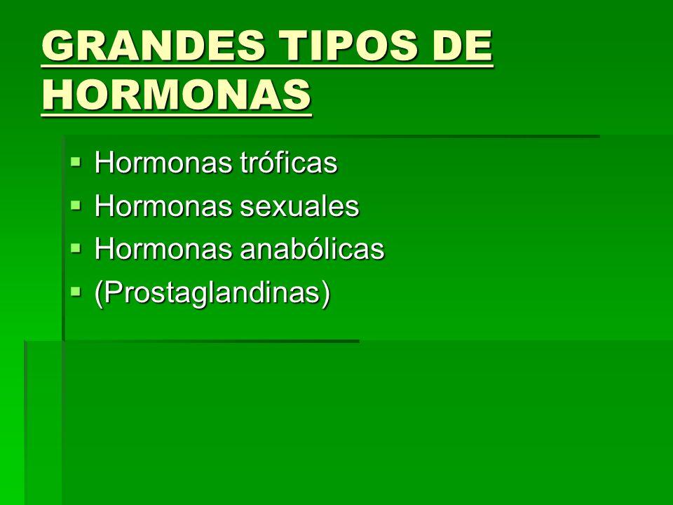 GRANDES TIPOS DE HORMONAS Hormonas tróficas Hormonas tróficas Hormonas sexuales Hormonas sexuales Hormonas anabólicas Hormonas anabólicas (Prostagland