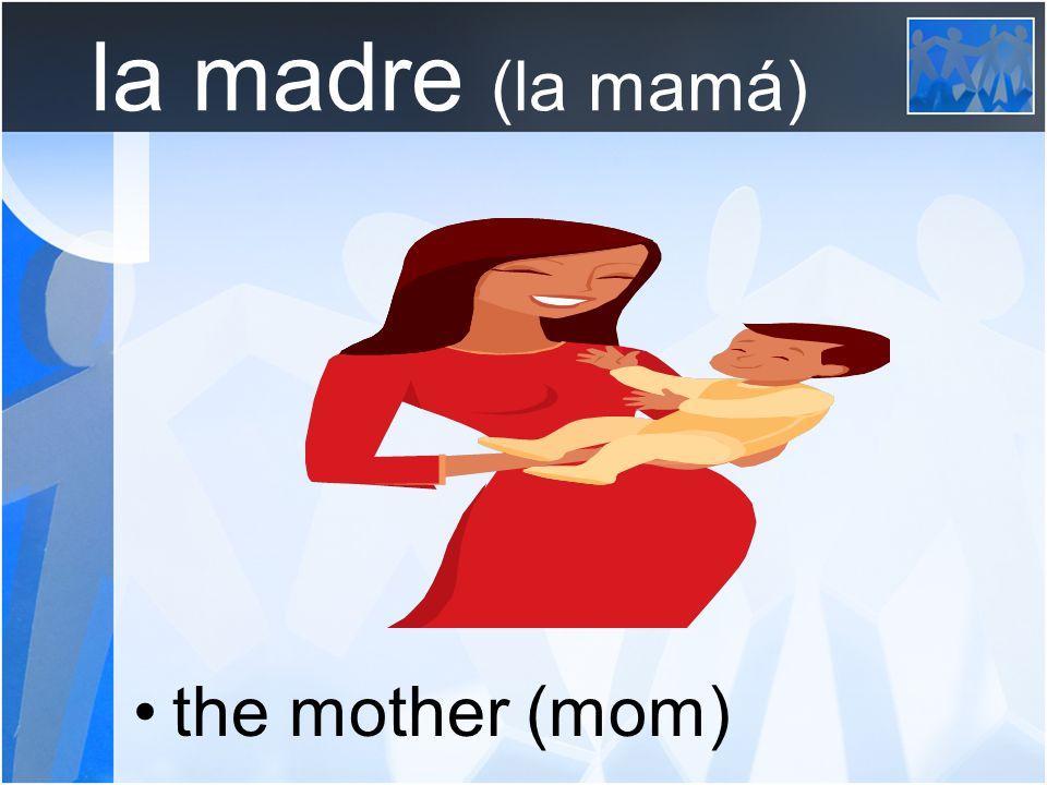 la madre (la mamá) the mother (mom)