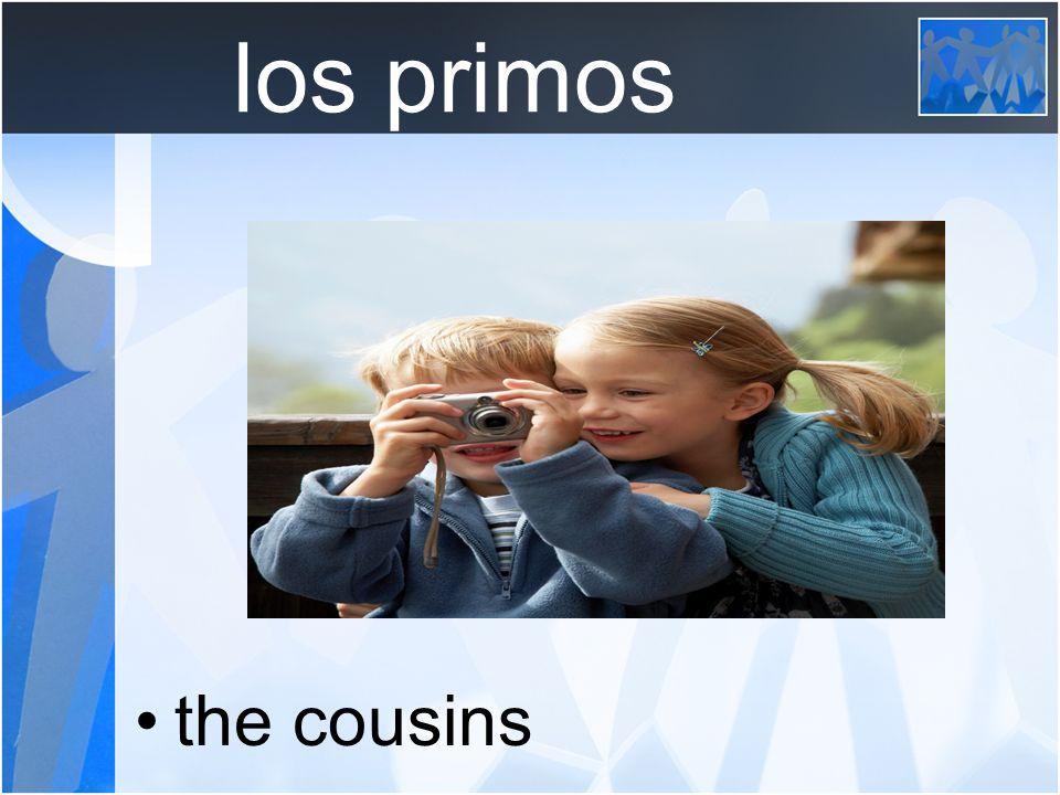 los primos the cousins