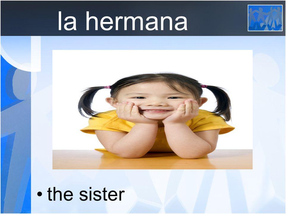 la hermanastra the step sister