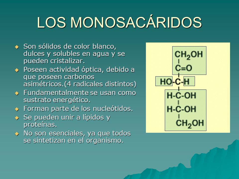 LOS MONOSACÁRIDOS Son sólidos de color blanco, dulces y solubles en agua y se pueden cristalizar. Son sólidos de color blanco, dulces y solubles en ag