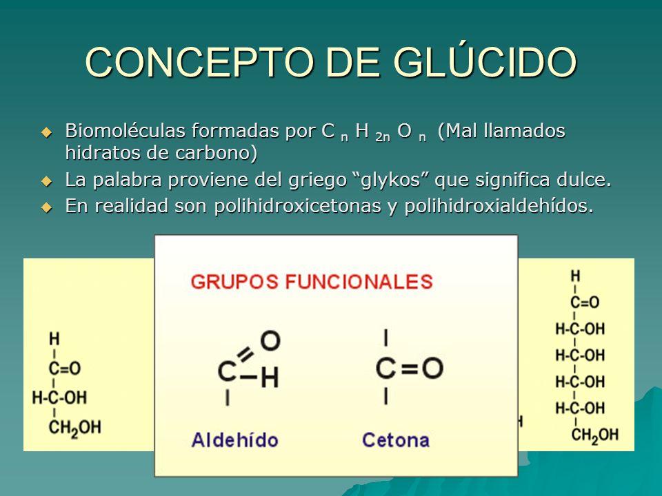 CONCEPTO DE GLÚCIDO Biomoléculas formadas por C n H 2n O n ( ( ( (Mal llamados hidratos de carbono) La palabra proviene del griego glykos que signific