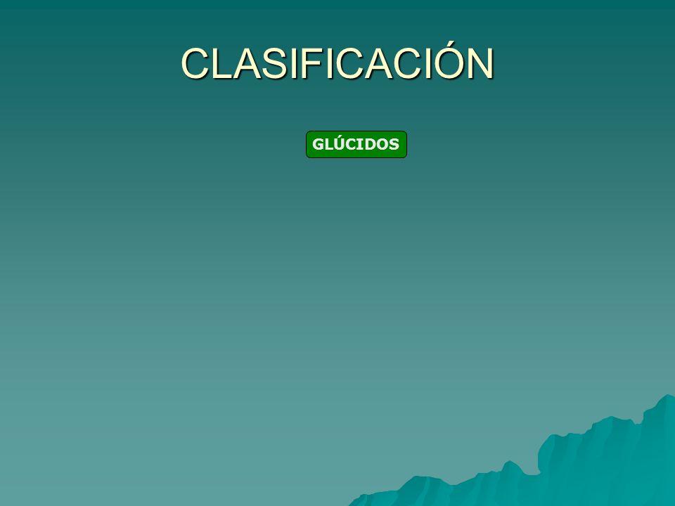 CLASIFICACIÓN GLÚCIDOS