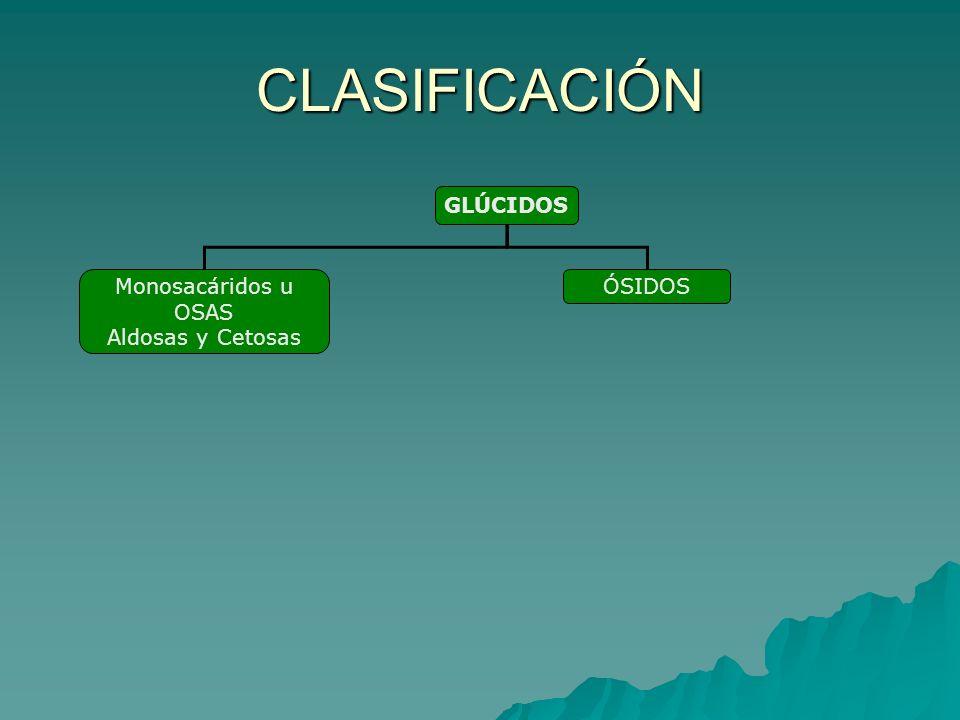 CLASIFICACIÓN Monosacáridos u OSAS Aldosas y Cetosas ÓSIDOS