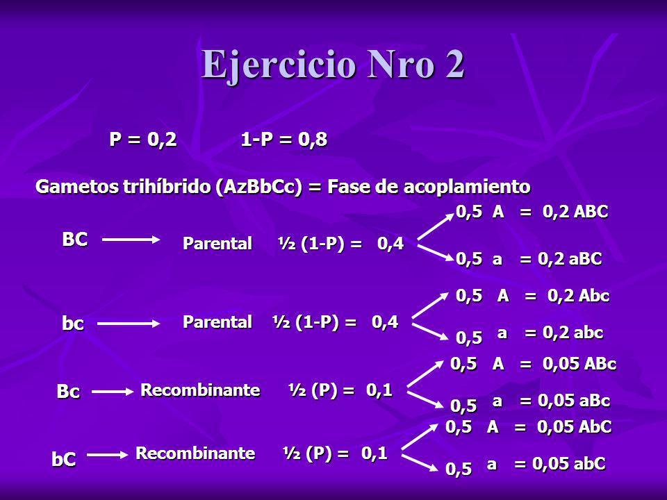 Ejercicio Nro 2 P = 0,2 1-P = 0,8 BC Parental Gametos trihíbrido (AzBbCc) = Fase de acoplamiento ½ (1-P) = 0,4 A a 0,5 0,5 = 0,2 ABC = 0,2 aBC bc Bc b