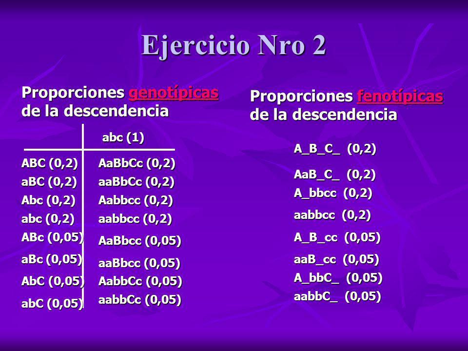 Ejercicio Nro 2 Proporciones genotípicas de la descendencia abc (1) ABC (0,2) Abc (0,2) aBC (0,2) abc (0,2) ABc (0,05) aBc (0,05) AbC (0,05) abC (0,05