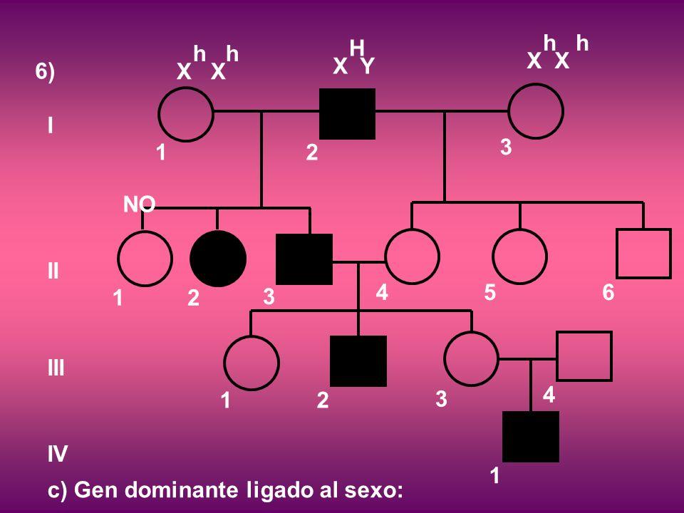 6) I II III IV 12 3 12 3 456 12 3 4 1 c) Gen dominante ligado al sexo: NO X h X Y H X h