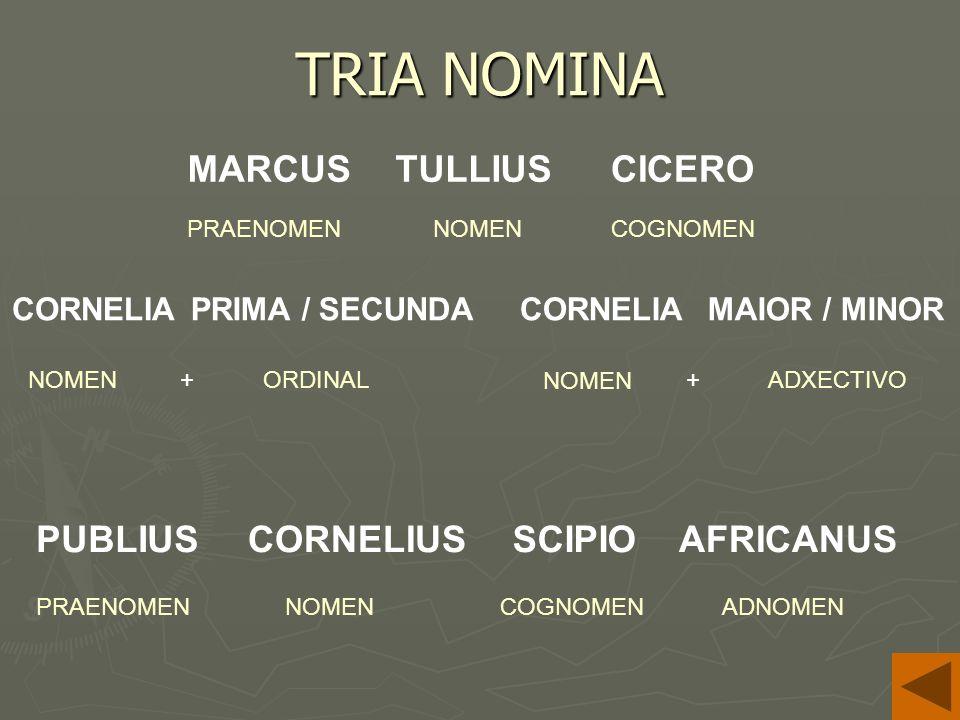 TRIA NOMINA PUBLIUS CORNELIA NOMEN MARCUS PRAENOMENCOGNOMEN NOMEN PRAENOMENCOGNOMENADNOMEN ORDINAL+ADXECTIVO+ TULLIUSCICERO CORNELIUSSCIPIOAFRICANUS CORNELIAMAIOR / MINORPRIMA / SECUNDA