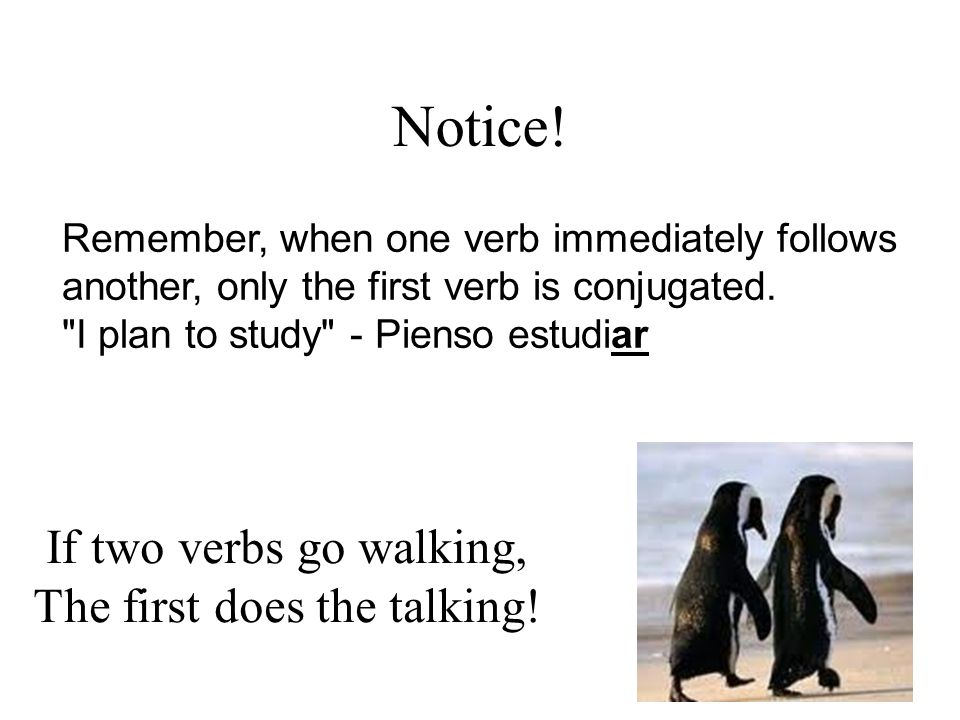 Notice. Remember, when one verb immediately follows another, only the first verb is conjugated.