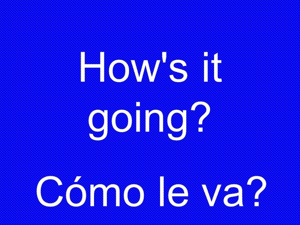 Cómo le va? How's it going?