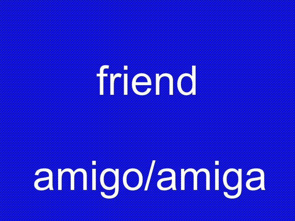 friend amigo/amiga