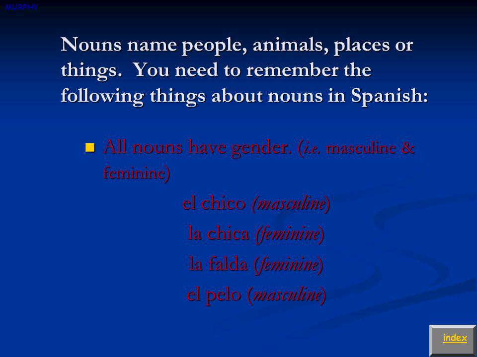 Nouns name people, animals, places or things.