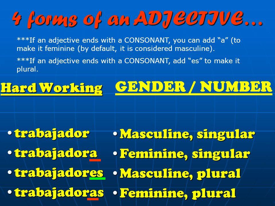 Strong Strong FuerteFuerte FuertesFuertes 4 forms of an ADJECTIVE… Neutral, singularNeutral, singular Neutral, pluralNeutral, plural GENDER / NUMBER *