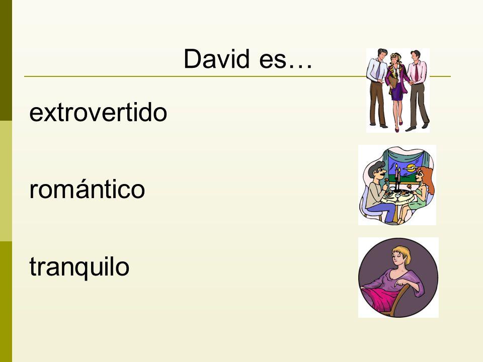 David es… extrovertido romántico tranquilo