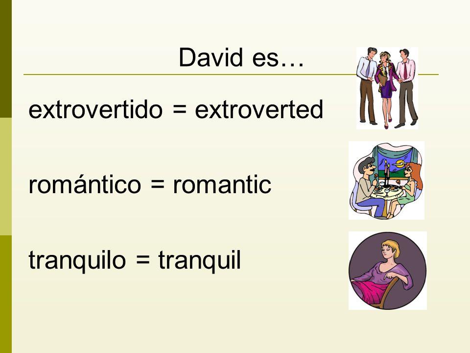 David es… extrovertido = extroverted romántico = romantic tranquilo = tranquil