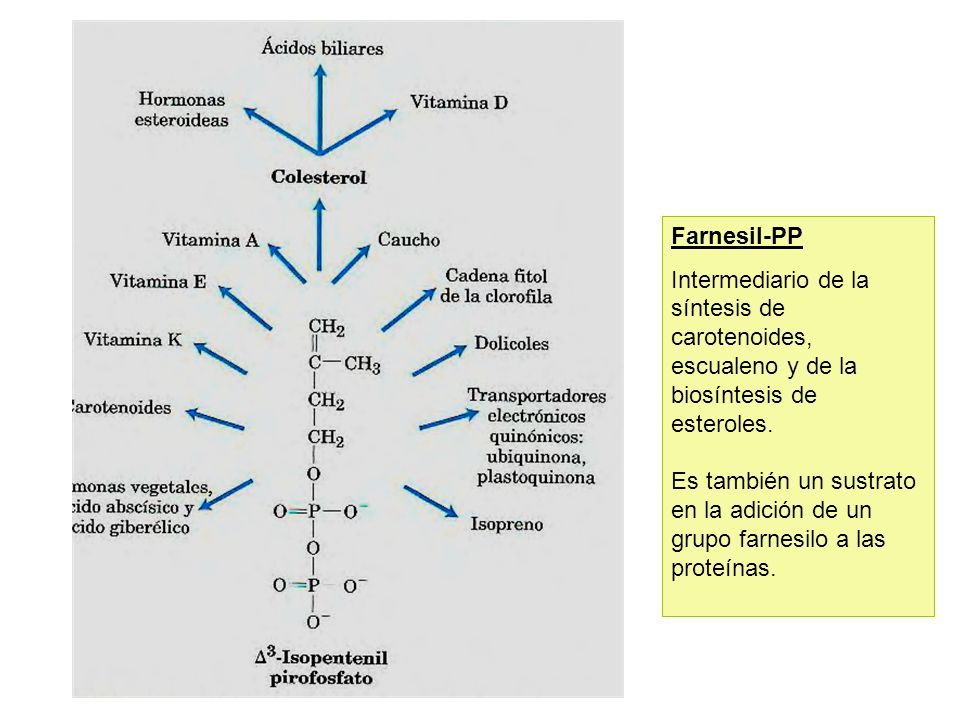 Farnesil-PP Intermediario de la síntesis de carotenoides, escualeno y de la biosíntesis de esteroles. Es también un sustrato en la adición de un grupo