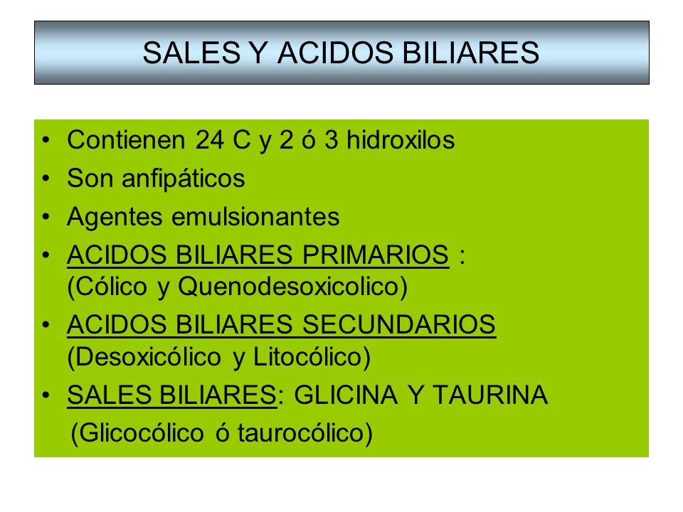 SALES Y ACIDOS BILIARES Contienen 24 C y 2 ó 3 hidroxilos Son anfipáticos Agentes emulsionantes ACIDOS BILIARES PRIMARIOS : (Cólico y Quenodesoxicolic