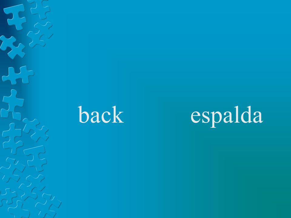 backespalda