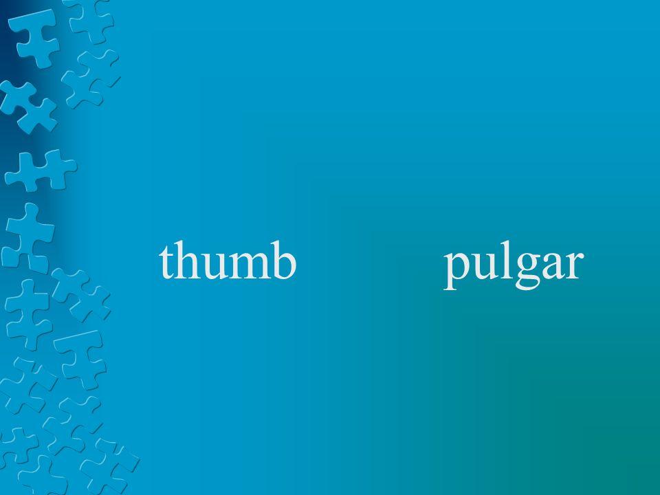 thumbpulgar
