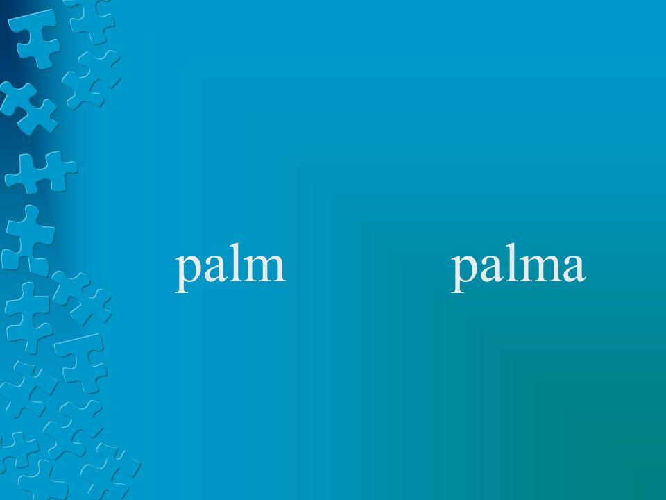 palmpalma