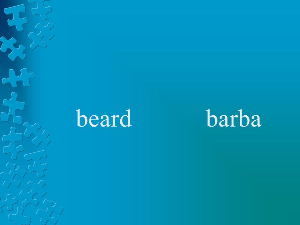 beardbarba