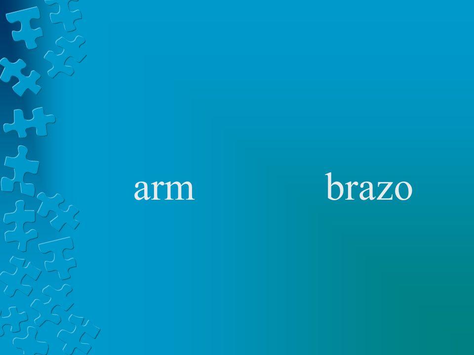 armbrazo