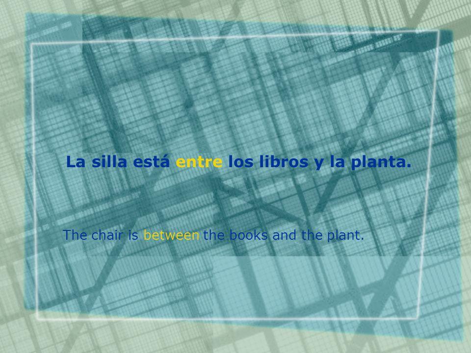 La silla está entre los libros y la planta. The chair is between the books and the plant.