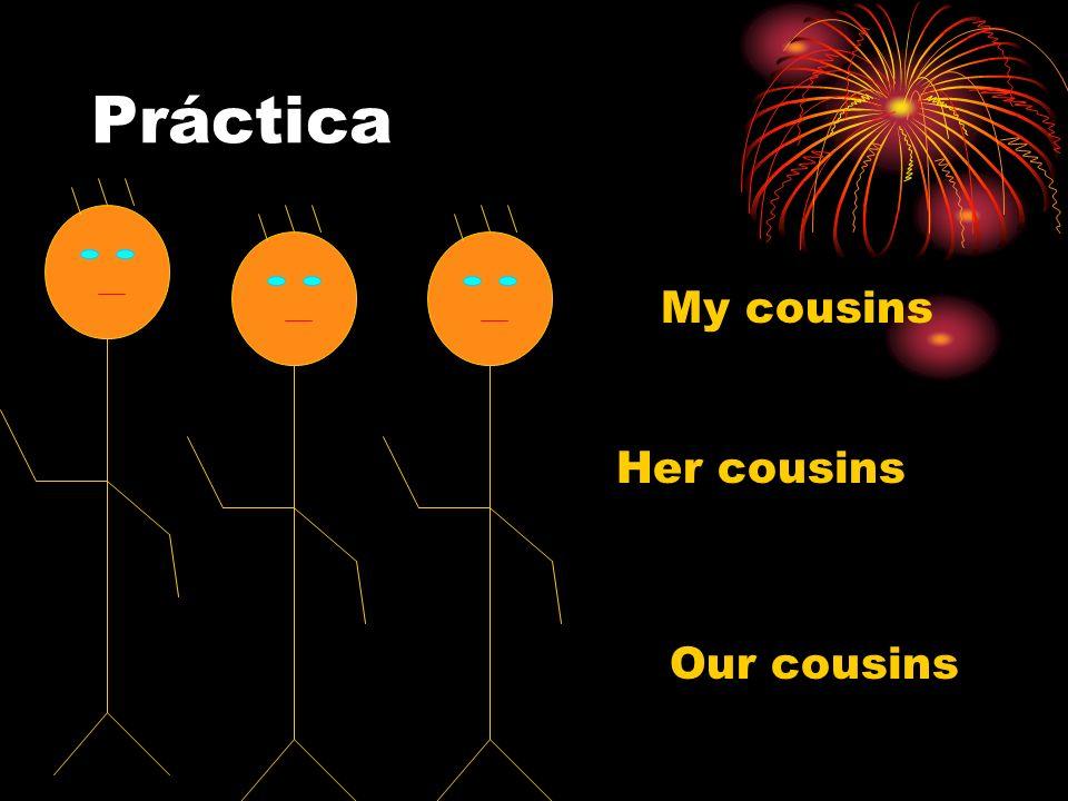 Práctica My cousins Her cousins Our cousins