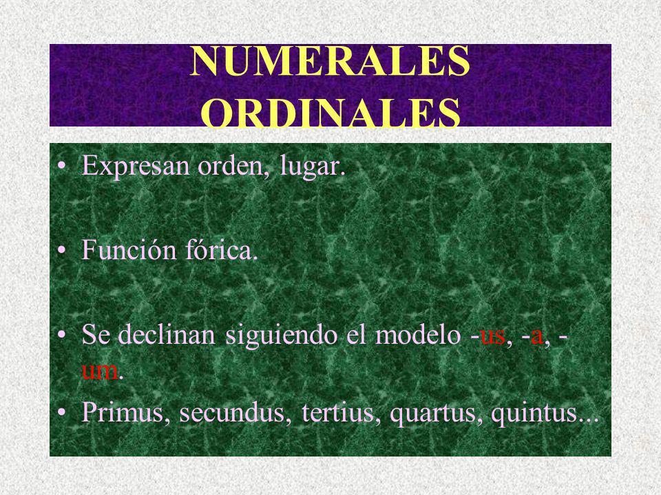 NUMERALES ORDINALES Expresan orden, lugar.Función fórica.