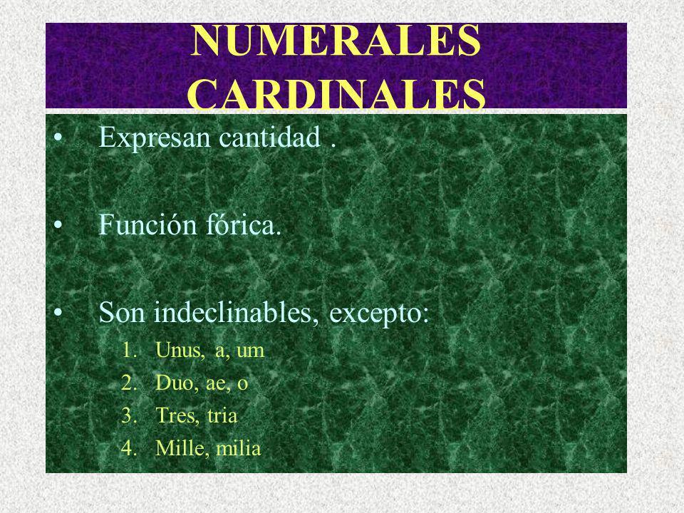 NUMERALES ORDINALES Expresan orden, lugar. Función fórica.