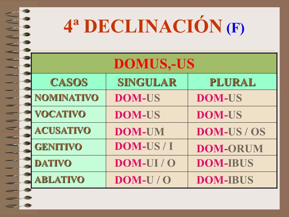 4ª DECLINACIÓN (M/F) SENATUS,-US CASOSSINGULARPLURAL NOMINATIVO VOCATIVO ACUSATIVO GENITIVO DATIVO ABLATIVO SENAT-UM SENAT-US SENAT-U SENAT-US SENAT-U