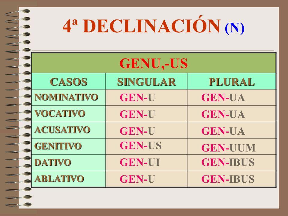 4ª DECLINACIÓN (F) DOMUS,-US CASOSSINGULARPLURAL NOMINATIVO VOCATIVO ACUSATIVO GENITIVO DATIVO ABLATIVO DOM-UM DOM-US DOM-U / O DOM-US DOM-US DOM-UI /