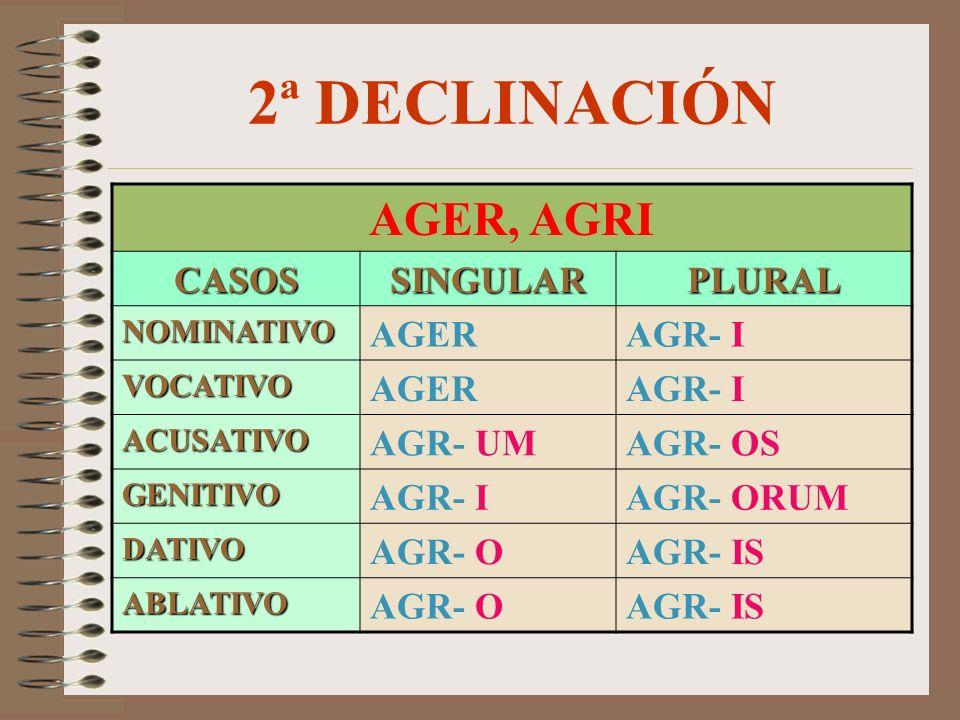 2ª DECLINACIÓN AGER, AGRI CASOSSINGULARPLURAL NOMINATIVO AGERAGR- I VOCATIVO AGERAGR- I ACUSATIVO AGR- UMAGR- OS GENITIVO AGR- IAGR- ORUM DATIVO AGR- OAGR- IS ABLATIVO AGR- OAGR- IS