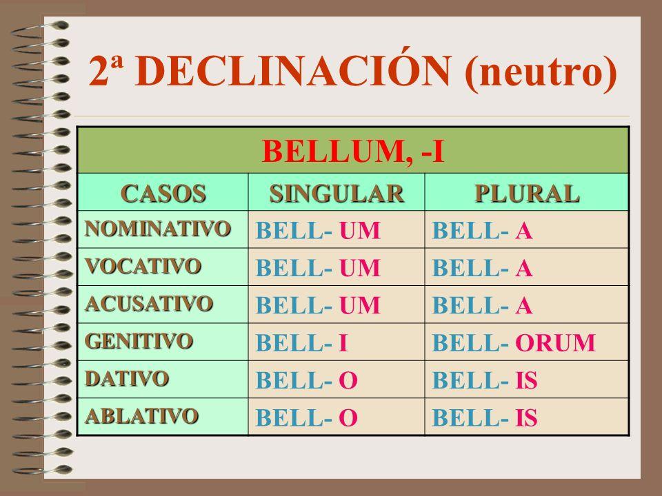 2ª DECLINACIÓN (neutro) BELLUM, -I CASOSSINGULARPLURAL NOMINATIVO BELL- UMBELL- A VOCATIVO BELL- UMBELL- A ACUSATIVO BELL- UMBELL- A GENITIVO BELL- IBELL- ORUM DATIVO BELL- OBELL- IS ABLATIVO BELL- OBELL- IS