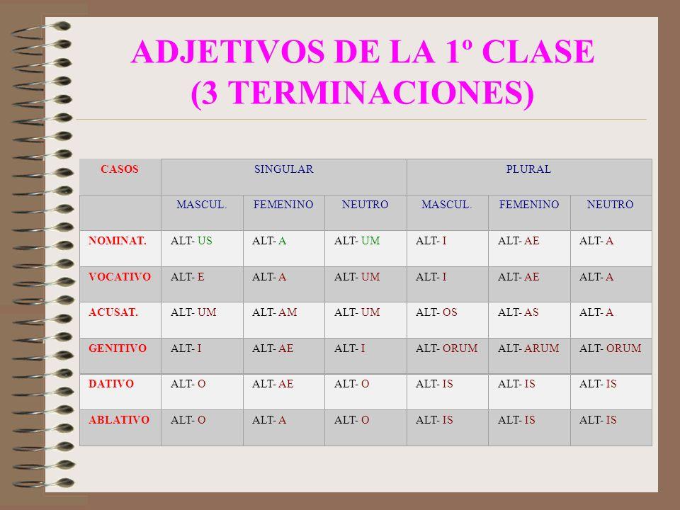 ADJETIVOS DE LA 1º CLASE (3 TERMINACIONES) CASOSSINGULARPLURAL MASCUL.FEMENINONEUTROMASCUL.FEMENINONEUTRO NOMINAT.ALT- USALT- AALT- UMALT- IALT- AEALT- A VOCATIVOALT- EALT- AALT- UMALT- IALT- AEALT- A ACUSAT.ALT- UMALT- AMALT- UMALT- OSALT- ASALT- A GENITIVOALT- IALT- AEALT- IALT- ORUMALT- ARUMALT- ORUM DATIVOALT- OALT- AEALT- OALT- IS ABLATIVOALT- OALT- AALT- OALT- IS