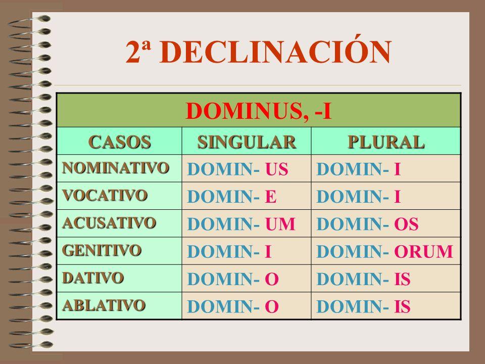 2ª DECLINACIÓN DOMINUS, -I CASOSSINGULARPLURAL NOMINATIVO DOMIN- USDOMIN- I VOCATIVO DOMIN- EDOMIN- I ACUSATIVO DOMIN- UMDOMIN- OS GENITIVO DOMIN- IDOMIN- ORUM DATIVO DOMIN- ODOMIN- IS ABLATIVO DOMIN- ODOMIN- IS
