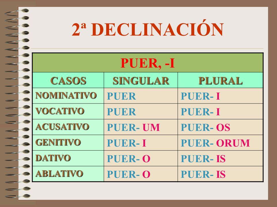 2ª DECLINACIÓN PUER, -I CASOSSINGULARPLURAL NOMINATIVO PUERPUER- I VOCATIVO PUERPUER- I ACUSATIVO PUER- UMPUER- OS GENITIVO PUER- IPUER- ORUM DATIVO PUER- OPUER- IS ABLATIVO PUER- OPUER- IS