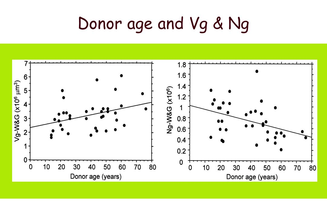 Characteristics of patients SCr < 200 mmol/l and proteinuria < 1g/24h 4m protocol biopsy (n=39) Mean SD ______________________________________ N39 Donor age38 18 Donor sex (male / female)26 / 13 Recipient age46 14 Recipient sex (male / female)24 / 15 Recipient BSA a (sqm) Cold ischemia time (hours)20 5 Delayed graft function (no / yes)37 / 2 Serum Creatinine ( mol/l) Proteinuria g/day ______________________________________ Fulladosa X et al J Am Soc Nephrol 2003; 14: 2662