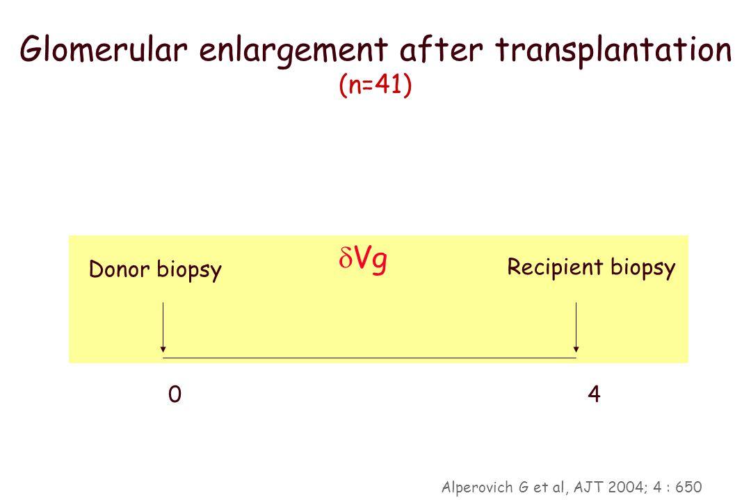 ¿Cómo se adaptan los glomérulos post TR