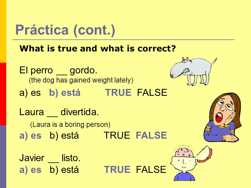 Práctica (cont.) El perro __ gordo. (the dog has gained weight lately) a) es b) está TRUE FALSE What is true and what is correct? Laura __ divertida.