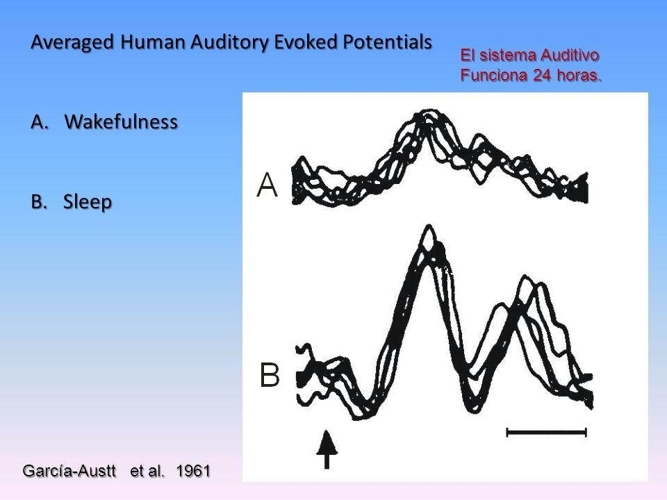 La actividad neuronal puede expresarse a través de diversas tecnologías 1. Registro de la actividad de campo cercano:1. Registro de la actividad de ca