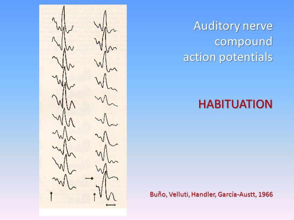 Averaged Human Auditory Evoked Potentials A.Wakefulness B. Sleep García-Austt et al. 1961 El sistema Auditivo Funciona 24 horas.