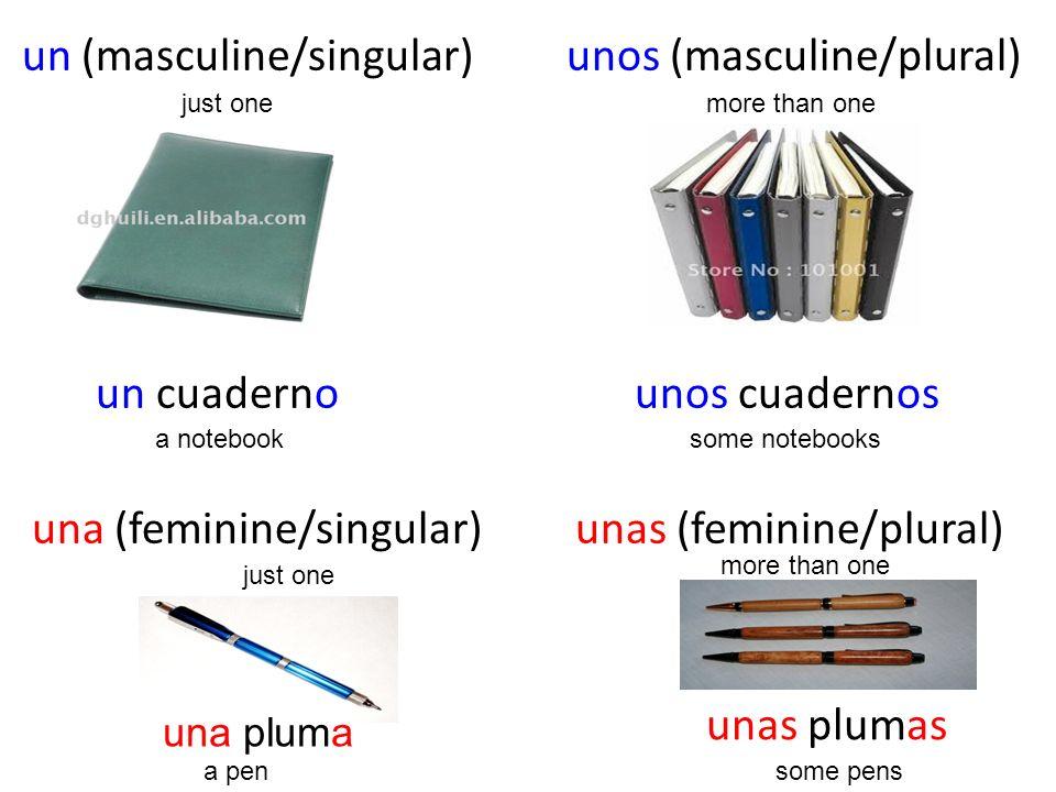 un (masculine/singular) unos (masculine/plural) un cuaderno unos cuadernos una (feminine/singular) unas (feminine/plural) just onemore than one unas p