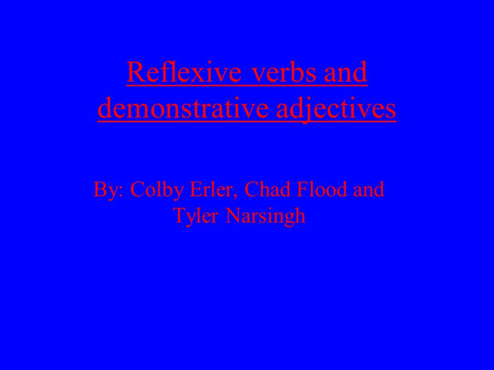 Reflexive verbs and demonstrative adjectives By: Colby Erler, Chad Flood and Tyler Narsingh