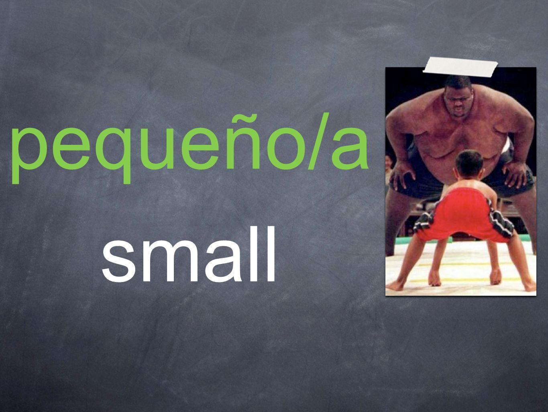 pequeño/a small