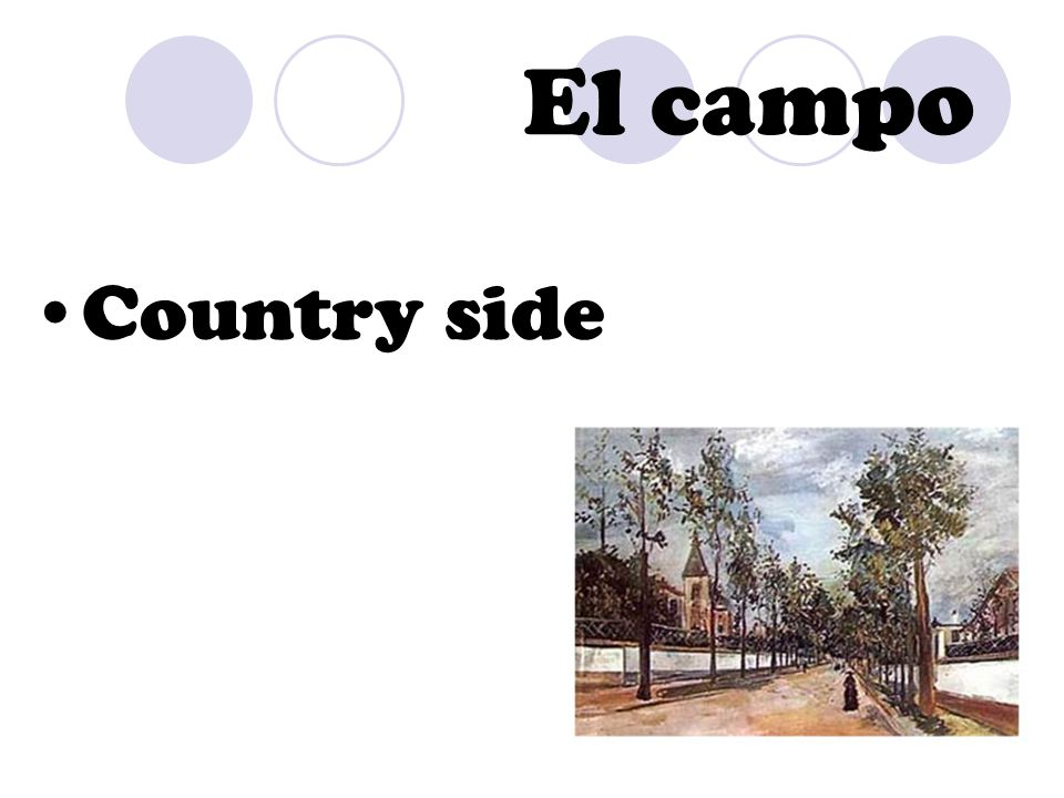 El campo Country side