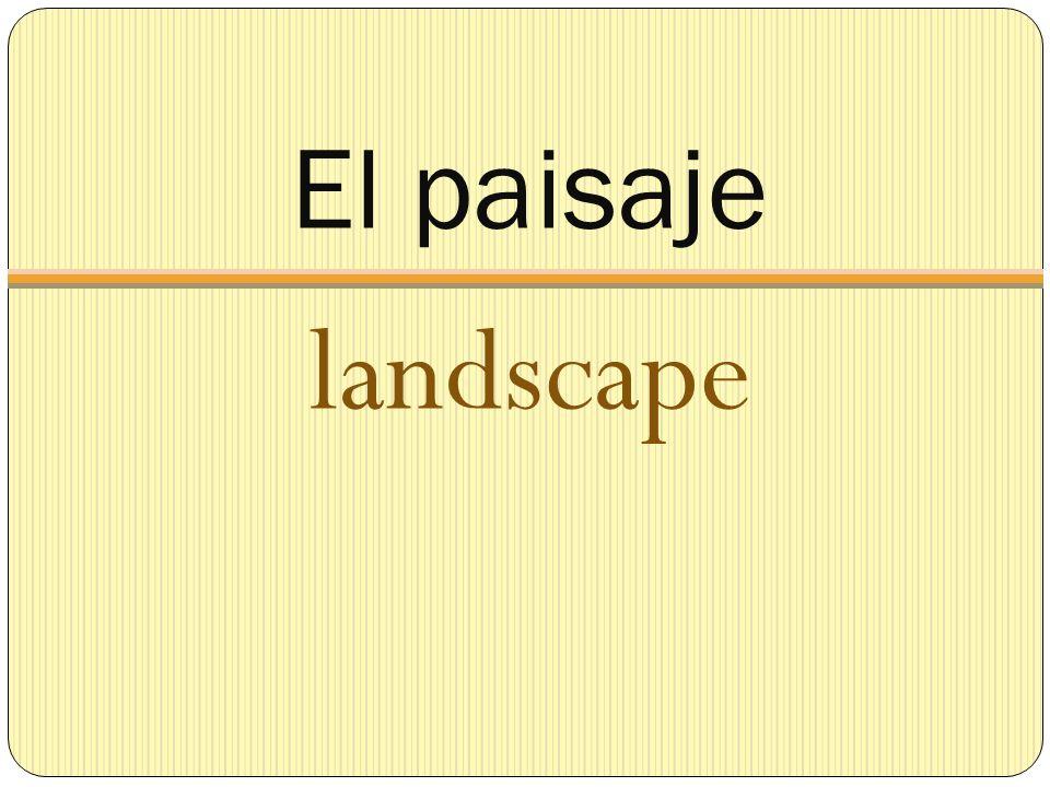 El paisaje landscape