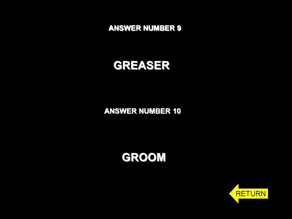 ANSWER NUMBER 9 ANSWER NUMBER 10 GREASER GROOM RETURN