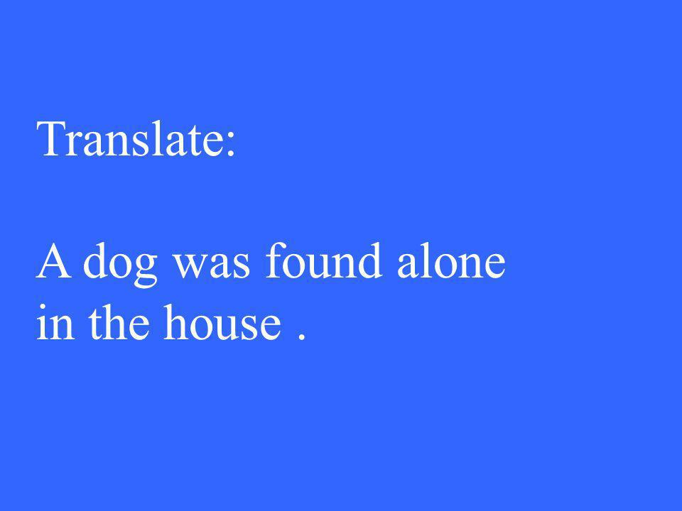 Translate: A dog was found alone in the house.