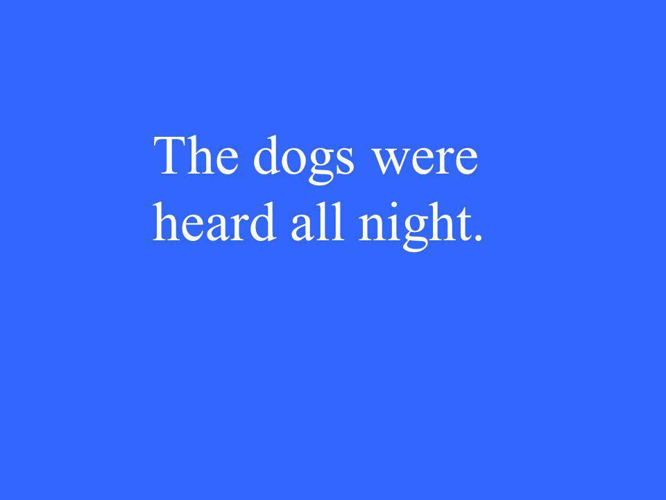 The dogs were heard all night.
